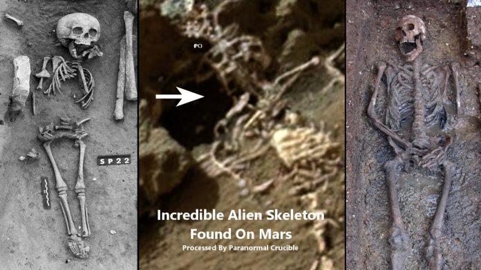 Marte: Opportunity fotografa uno scheletro alieno?